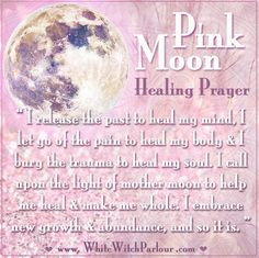 April, Pink Moon, Full Moon, Prayer, healing, metaphysical, white witch, spring, new life, occult, blessing, chant, book of shadows, witch, reiki, shaman, plant seeds, boho, goddess, meaning, wicca, bewitched, healer, priestess, meditation  www.whitewitchparlour.com