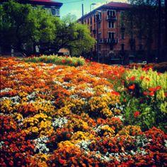 GV Spring in Milano