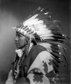 Sego, Shoshone - Indians of many separate tribes who spoke different languages considered the land where the Oregon/California trails ran through their home. Sioux, Shoshone, Kiowa, Crow, Ute, Paiute, were some of the various tribes that an emigrant train might encounter. Many of the depredations done by Shoshone Indians were on the stretch between Soda Springs/Ft. Hall and Snake River where it runs through what is now southern Idaho.