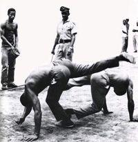 Capoeira Angola.  Joao Grande and Joao Pequeno
