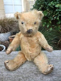 "ENGLISH CHILTERN GOLD MOHAIR TEDDY BEAR CIRCA 1930s 12"" TALL"