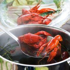 Suomalaiset keitetyt ravut - Reseptit – Kotiliesi Finland, Shrimp, Meat, Food, Essen, Meals, Yemek, Eten