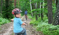 For ease of navigation and also for pleasure, trails through the woods would be a great way to access the acres.