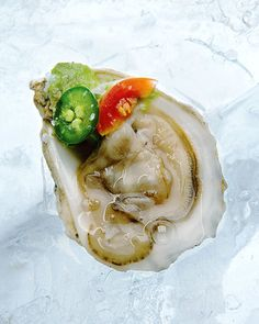 Oysters are my FAV. Oysters with Serrano Chile, Avocado, and Cherry Tomatoes from Stewart - Avocado Green Wedding Inspiration - Wedding Appetizers New Year's Eve Appetizers, Elegant Appetizers, Wedding Appetizers, Appetizer Recipes, Appetizer Party, Cherry Tomato Recipes, Oyster Recipes, Chili, Fish And Seafood