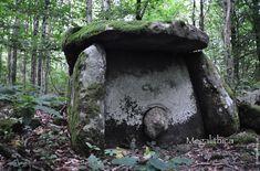 Древние дольмены в Сочинском Национальном парке - megalithica.ru Bird, Outdoor Decor, Birds