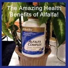 The Amazing Health Benefits of Alfalfa!    Here are a few of them: pain & stiffened joints, arthritis, ulcers, stomach disorders, colon problems, gas pains, hiatal hernia, water retention, swollen ank (Joint Pain Relief Ankle)