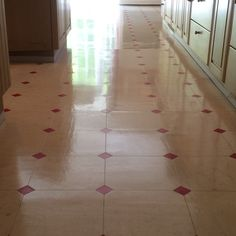 Vinyl floor cleaning and polishing Surrey Vinyl Floor Cleaners, Floor Cleaning, East Sussex, Vinyl Flooring, Surrey, Hampshire, Vinyl Floor Covering, Hampshire Pig, The Hampshire