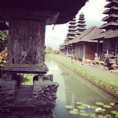 Missing Bali