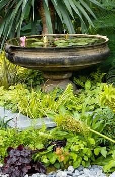 Small water feature with Nymphaea - Water lilies in stone urn in The Burgbad Sanctuary garden with shade loving plants, Epimedium, Acorus gramineus Ogon, Eucomis, Heuchera and Ferns - RHS Hampton Court Flower Show 2008
