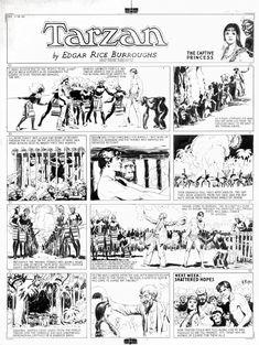 Hal Foster Tarzan 1934 sunday Comic Art