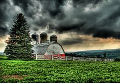 Pennsylvania Barn...right before the storm hit.  You can see the setting sun through the pine tree.
