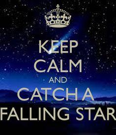 Catch a falling star . *