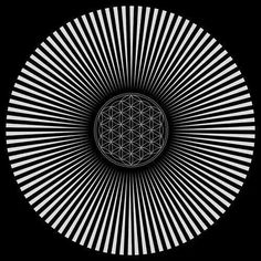 Flower of Life . Image Illusion, Illusion Art, Sacred Geometry Art, Sacred Art, Sacred Symbols, Flower Of Life, Fractal Art, Optical Illusions, Oeuvre D'art
