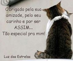 Adoro Artesanato: feliz dia do amigo Special Words, Friends Day, Best Friends Forever, Osho, Family Love, Happy Dogs, True Words, Animals And Pets, Cat Lovers