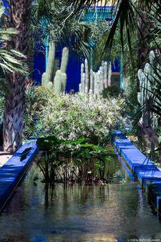 Jardin Majorelle à Marrakech, Maroc / Garden visit Marrakesh Morocco Marrakesh, Riad Marrakech, Africa Destinations, Travel Illustration, Sea Waves, Blog Voyage, Landscape Photos, Dream Vacations, Places To Go