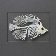 Skeleton Drawings, Fish Skeleton, Skeleton Art, Animal Skeletons, Animal Skulls, Fish Anatomy, Animal Anatomy, Human Skeleton Anatomy, Skull Reference