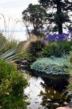 Dan Hinkley's latest garden, Windcliff on Bainbridge Island,WA