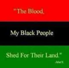 red - the blood that unites all people of African ancestry, and the blood that is shed for liberation     black - black people whose existence as a nation, though not a nation-state, is affirmed by the existence of the flag     green - the abundant natural wealth of Africa    .