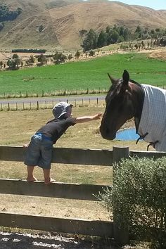 The winner of this week's competition is Hilary Samuel from Taupo. This is just such a summery NZ image! Very cute :-)