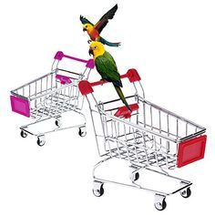 Anself Cute Metal Mini Shopping Supermarket Cart Pet Bird Toy for Parrot Conures Parakeet Lovebirds Cockatiel Random Color - This is mini simulated shopping cart toy that your parrots cannot miss! Made of iron, it is durable and with 4 castrers to smoothly move everywhere. You can put food, snacks, toys in it, and your bird will play with it happily, even if you're out for work, your pet will never feel lonely. Thi...