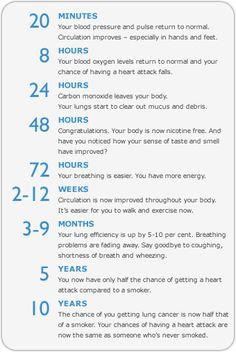 Google Image Result for http://www.freshstart.nhs.uk/health-benefits-of-quitting/time-chart.gif