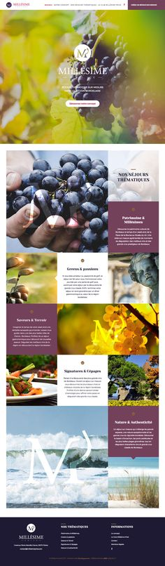 #webdesign #agency #bordeaux #site #internet  #website #design #agence #web #luxery #wine #purple #nature #travail #vacation #journey #france
