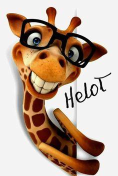 Cartoon giraffe with glasses smiling Stock Photo , Giraffe Drawing, Giraffe Art, Nutty Buddy, Funny Giraffe, Cartoon Giraffe, Animation, Funny Faces, Illustrations, Animal Drawings