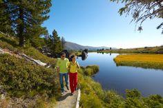 Zwischen 1.050 und 2.500 Höhenmetern erstreckt sich ein Wandergebiet, das Ihnen einen außergewöhnlich schönen Wanderurlaub in Kärnten garantiert: 1.000 Kilometer an markierten Wanderwegen, Relax-Hängematten an faszinierenden Wasser-Naturschauplätzen, Speik-Pflegestationen für müde Füße und vieles mehr: So ist Wandern in Kärnten. So ist Wandern im Nationalpark Nockberge. Näheres unter http://www.kirchleitn.com