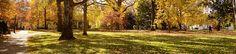 365@VU: 317 - Panoramic VU by Vanderbilt University, via Flickr
