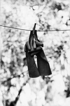Elliot Erwitt - Gloves
