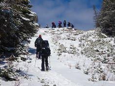 Sommet du mont Saddle Crédit photo : MG Guiomar