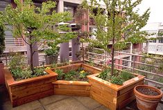 Raised bed shapes   by Exteriorscapes, via Flickr