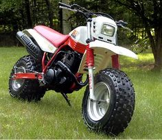 MOTAV8D1 - 1986 Yamaha BW350  - This was my second bike.  I bought it from my Uncle for $900 and sold it, all original (sans the tires and gas tank) 19 years later for $1,100.