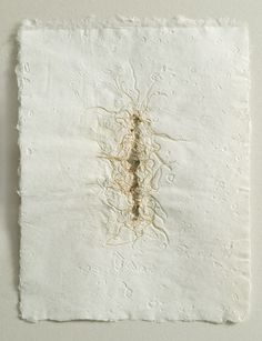 by Michele Brody Recycled handmade flax paper within which flax seeds were sprouted and dried with the root side up.