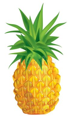 Illustration about Vector illustration of ripe pineapple. Illustration of image, nature, summer - 12615798 Fruits And Vegetables Pictures, Vegetable Pictures, Flip Flop Images, Pineapple Illustration, Ripe Pineapple, Hawaiian Party Decorations, Fruits Drawing, Barbie Paper Dolls, Photo Frame Design