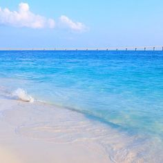 【chura_umiyuu】さんのInstagramをピンしています。 《🍂🍃🌪さむい〜 . . . #wave#team_jp_#東京カメラ部#beach#海#sea#okinawa#沖縄#japan#カメラ女子#sky#空#カコソラ#l4l#olympus_pen#ファインダー越しのわたしの世界#travel#写真好きな人と繋がりたい#instagood#photo#myuncam#surf#surfing#genic_mag#Canon#一眼レフ#宮古フォト祭り#宮古島#前浜ビーチ#来間大橋 ※no f4f》