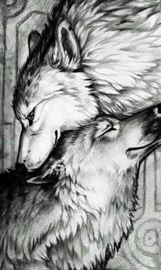 Charcoal Drawings Would be great as a charcoal drawing Animal Drawings, Cool Drawings, Contour Drawings, Drawing Faces, Mononoke Anime, Drawn Art, Wolf Tattoo Design, Wolf Love, Wolf Pictures