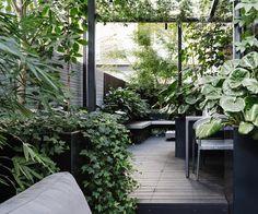 How to create an inner-city terrace garden # fashiondesign . Small Terrace, Terrace Garden, Garden Spaces, Back Gardens, Small Gardens, Outdoor Gardens, Rooftop Gardens, Courtyard Design, Garden Design