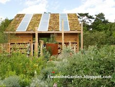 Ewa in the Garden: Search results for recycled