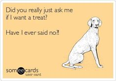 """""""Did you really just ask me if I want a treat? Have I ever said no?"""""""