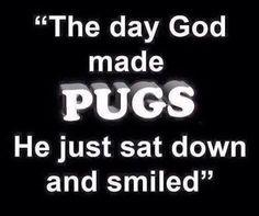Pug stuff