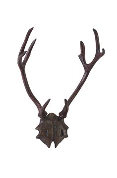 Bronzed Wall Mounted Antlers | American Home | Albuquerque, Santa Fe, Farmington - NM