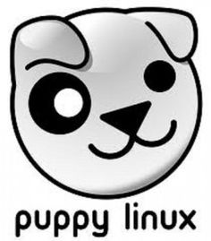 Linux Programming Without Installing Anything