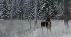 https://flic.kr/p/2315S5d | Fallow Deer-007 | The Fallow Deer at Binemust maps.secondlife.com/secondlife/Binemust/132/156/717   Thank you for such beauty, dear Bine Rodenberger!