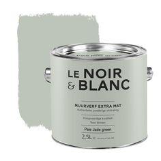 Le Noir & Blanc muurverf extra mat pale jade green 2,5 l kopen? Verfraai je huis & tuin met Muurverf kleur van KARWEI