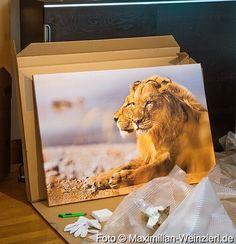 Maximilian Weinzierl – Fotografie – Blog: große Freude auf 120 x 80 cm