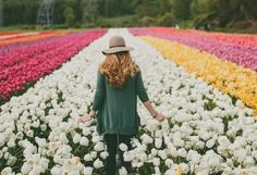The Abbotsford Tulip Festival Is Back Next Month