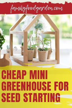 Instead of buying seeds for the garden consider starting your own seeds. It's fun and cheap. Family Food & Garden provides you with a comprehensive guide with a checklist to shop for what you need to buy to put together a mini greenhouse for seed starting. There are numerous ideas to build a DIY mini (and even) portable greenhouse. With so many options you are bound to find the right set up that suits you best. Remember to have fun! Learn more… #diygreenhouse #minigreenhouse #seedstarting Portable Greenhouse, Indoor Greenhouse, Small Trees, Small Plants, Container Gardening, Gardening Tips, Healthy Fruits And Vegetables, Buy Seeds, Seed Starting
