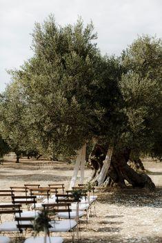 Elevated Simplicity in Puglia - The Lane Outside Wedding Ceremonies, Wedding Ceremony Backdrop, Wedding Reception Decorations, Wedding Table, Ceremony Seating, Sustainable Wedding, Destination Wedding Locations, Italy Wedding, Wedding Beauty
