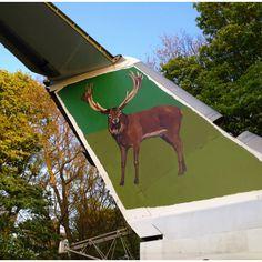 Deer Air